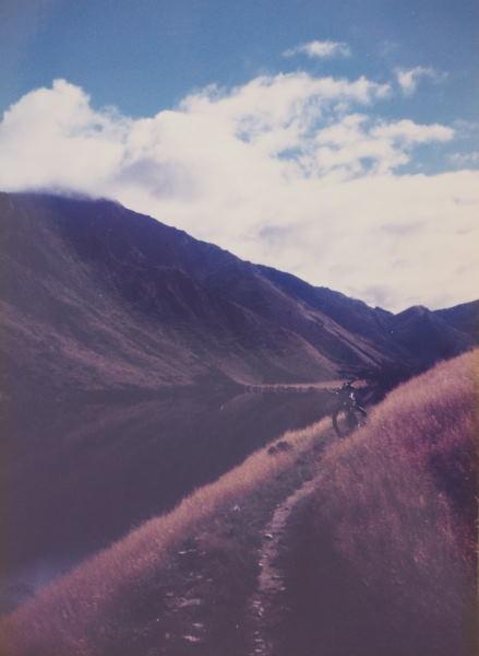 NZ_photo2