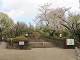 17.04.13羽根木公園01