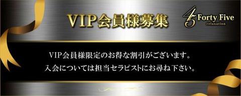 VIP500