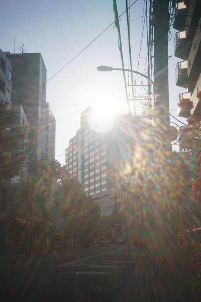 rowi_pan-focus_50mm_sony_a7