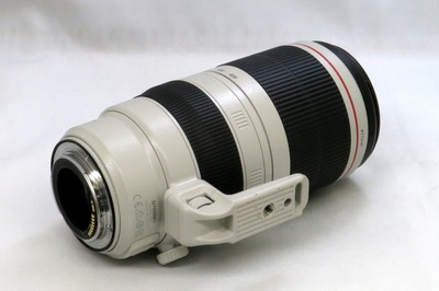 canon_ef_100-400mm_is_ii_usm_b