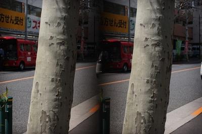 pentax_stereo_adapter_49mm_super_takumar_50mm_sony_a7
