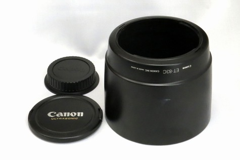 canon_ef_100-400mm_l_is_usm