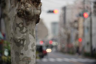 sankyo_koki_komura-_105mm_l39_sony_a7