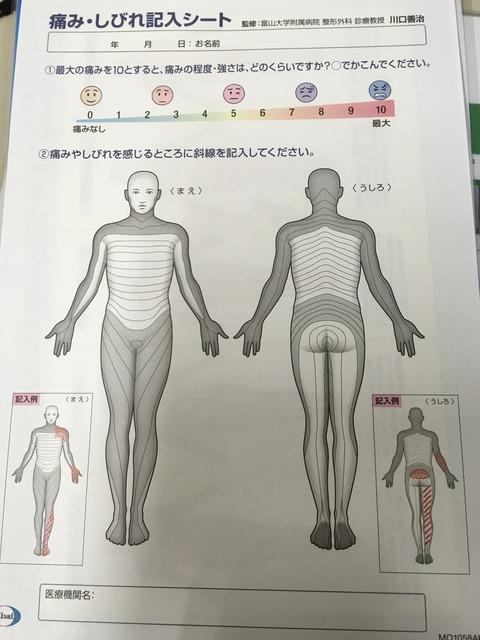 脊椎科新患の問診票にエーザイの「痛み・しびれ記入シート」が便利です!