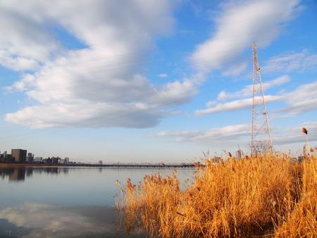 淀川河川公園(空振り(再))