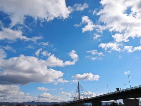 淀川河川公園(空振り)