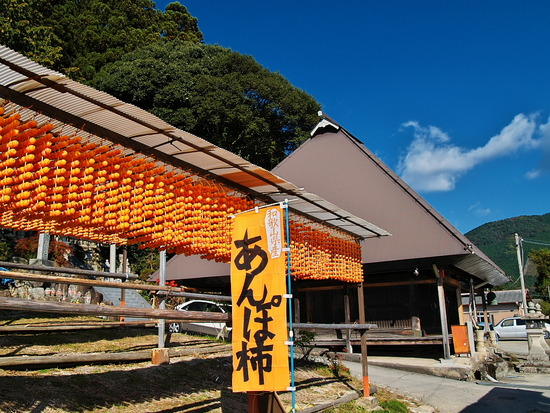四郷の吊柿(続き)
