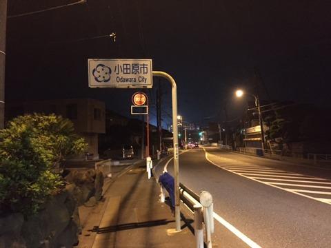 45km小田原