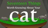 猫に関するトリビア