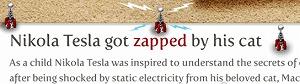 単位にもなっている物理で有名なテスラ博士は、猫から受けた静電気をきっかけに電気に興味を持ちました