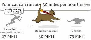 猫はウサイン・ボルトよりも早く走れます