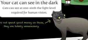 猫は人間の6倍の暗さでも瞬時に物を見れます