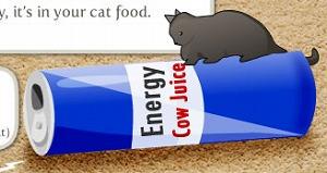 猫に必要なタウリンは猫のエサから摂取させてください