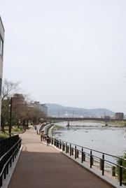 2012_04020029