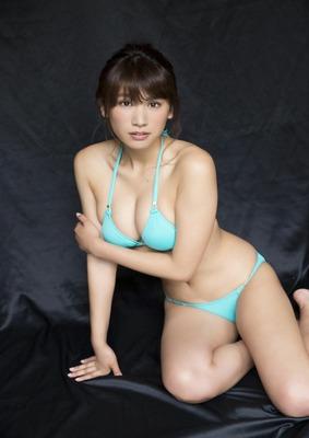 model (5)