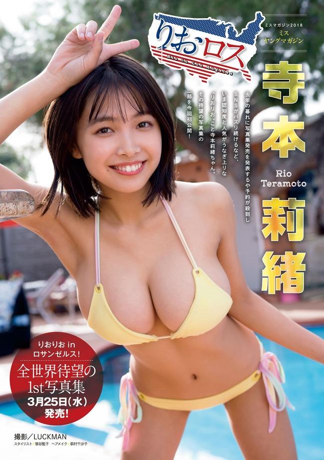 寺本莉緒 グラビア (35)