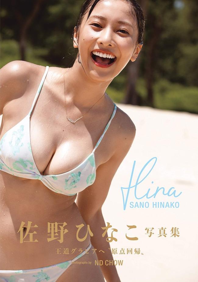 佐野ひなこ グラビア (21)