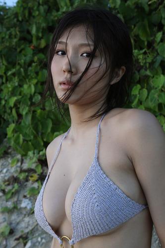 ai_ai (1)