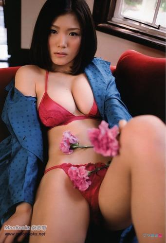 ai_ai (22)