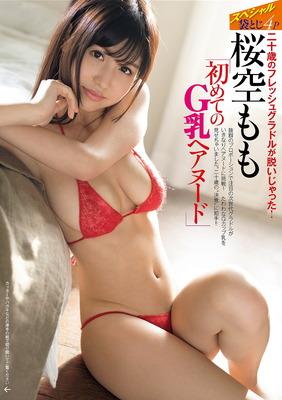 sakura_momo (4)