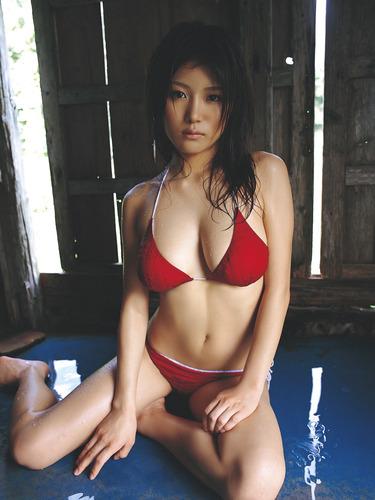ai_ai (67)