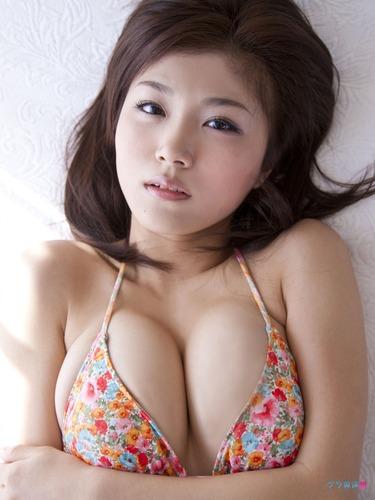 ai_ai (76)