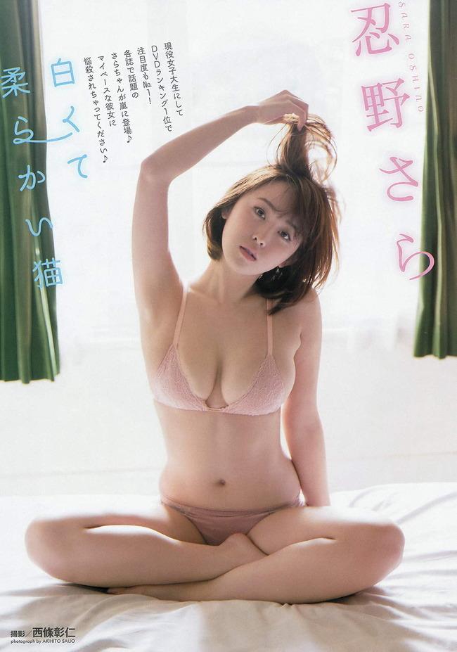 oshino_sara (9)