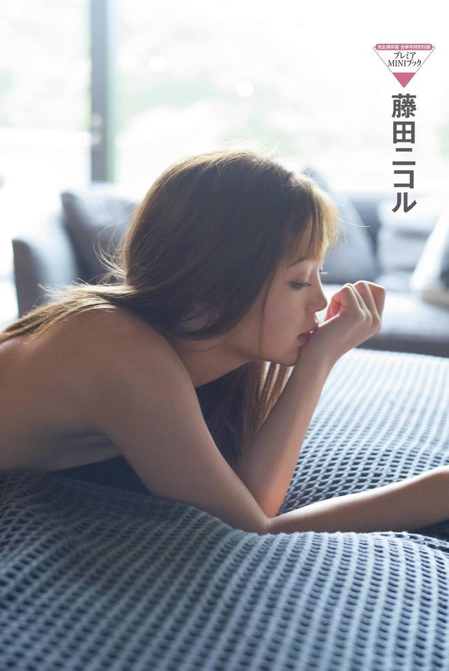 fujita_nikoru (8)