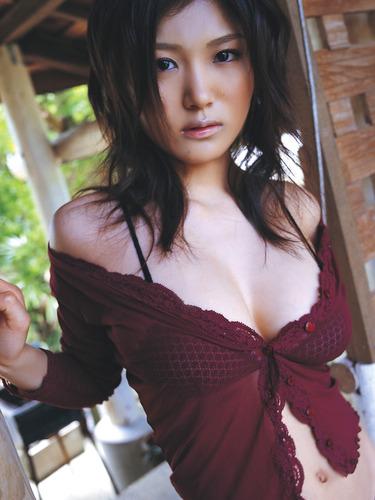 ai_ai (70)