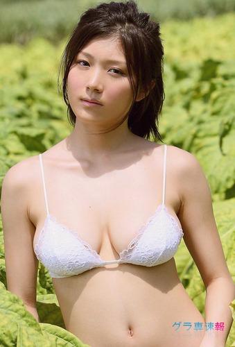 ai_aijpg (70)