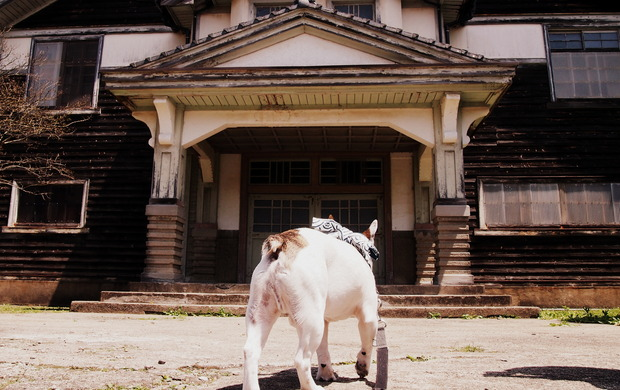 波佐見焼祭りに行ってきた(20160430)