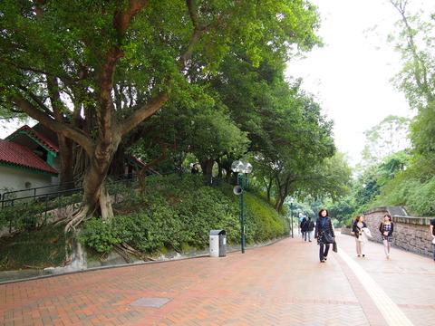 香港と色々 160