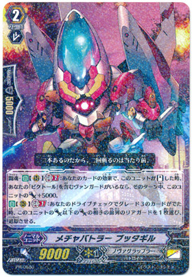 card100046878_1