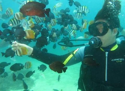 連休GW沖縄那覇市一人団体貸し切りができるおすすめスキューバダイビング初心者年配女性に人気