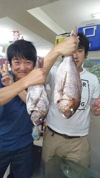 鯛!瀬戸内海の鯛