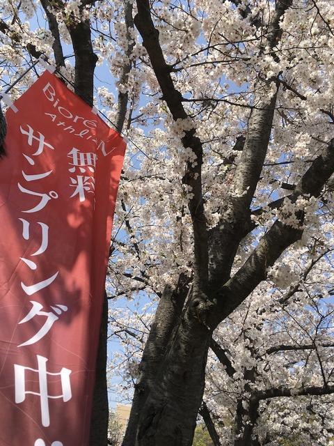 【体験会レポート】福岡・立川・葛西、先週末も各地で体験会、練習会尽くし!