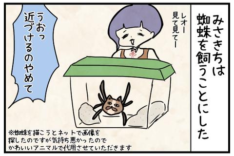蜘蛛を飼うことにした。蜘蛛にはかわいいアニマル(ビチグソン)を模しております。