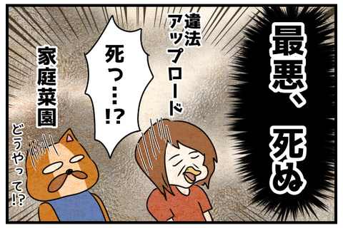「死ぬの!?」と驚く狐と狼。
