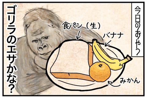 今日のおやつは食パン、バナナ、みかん。ゴリラのエサかな?