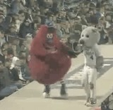 動画:野球 -マスコット転落事件- [衝撃]