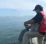 動画:石の重心を見極めた男 [神]