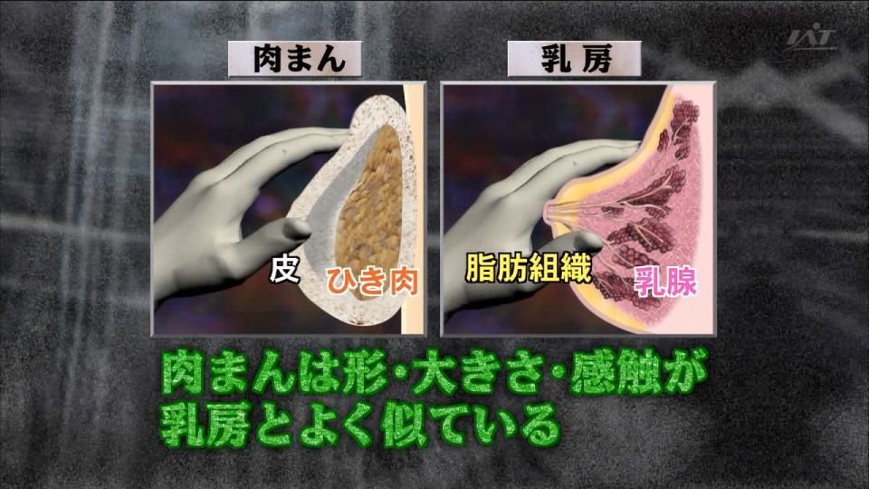 画像:乳房と触り心地が同じ食べ物 [おもしろ]