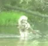 動画:少女が大きな魚を直接捕まえた映像 [感動]