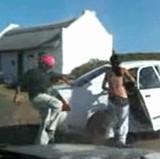 動画:野生の猿に衣服を剥がされる女性 [エロ]
