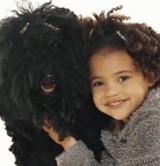 動画:ペットと飼い主は似る [ほのぼの]