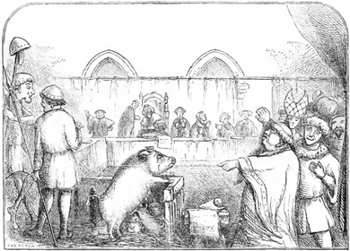 medieval-animal-trials-650x467