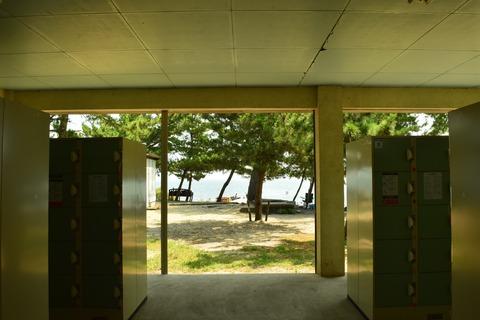 琵琶湖 写真 栄光の架け橋風