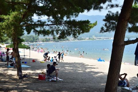 琵琶湖 夏 日陰