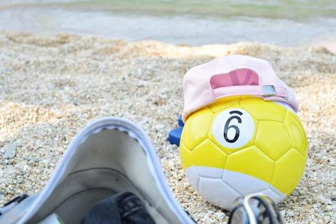 琵琶湖 夏 淡水浴 ボール